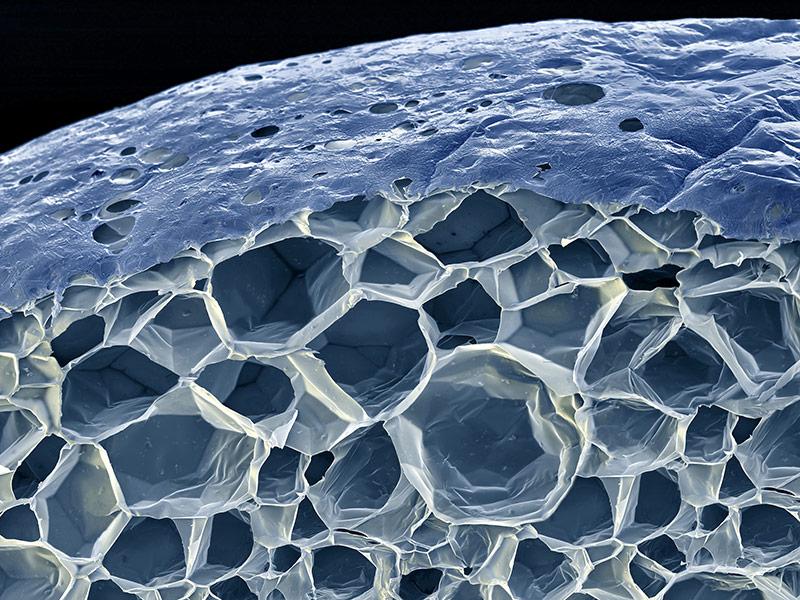 стекло под микроскопом фото