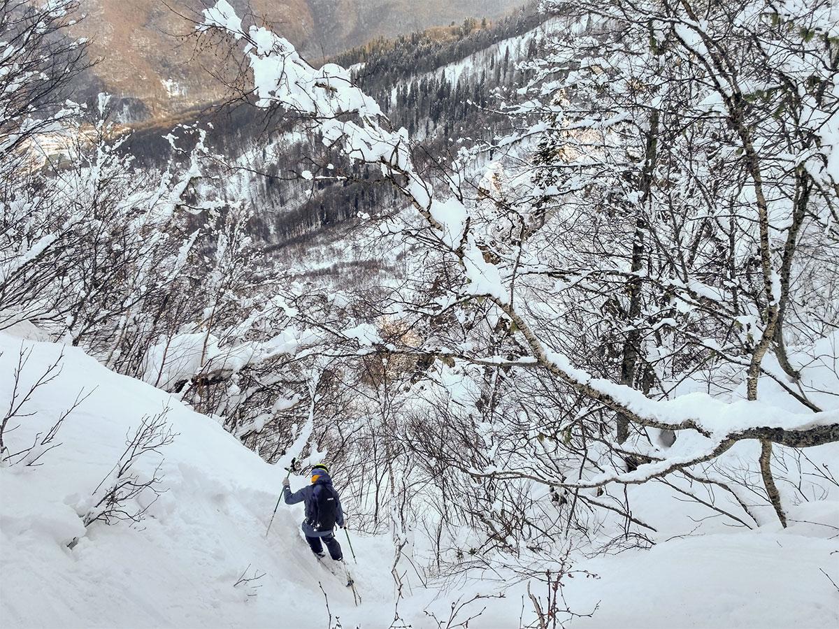 Для лесного катания нужны хороший навык и высокий уровень контроля