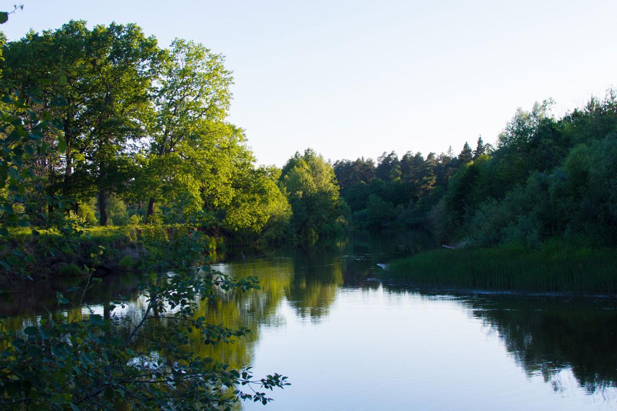 С одной стороны — высокий берег с дубами, а с него открывается вид на широкую долину