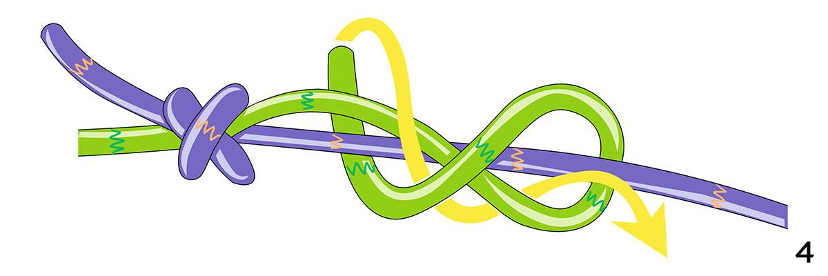 Схема узла «Грейпвайн»