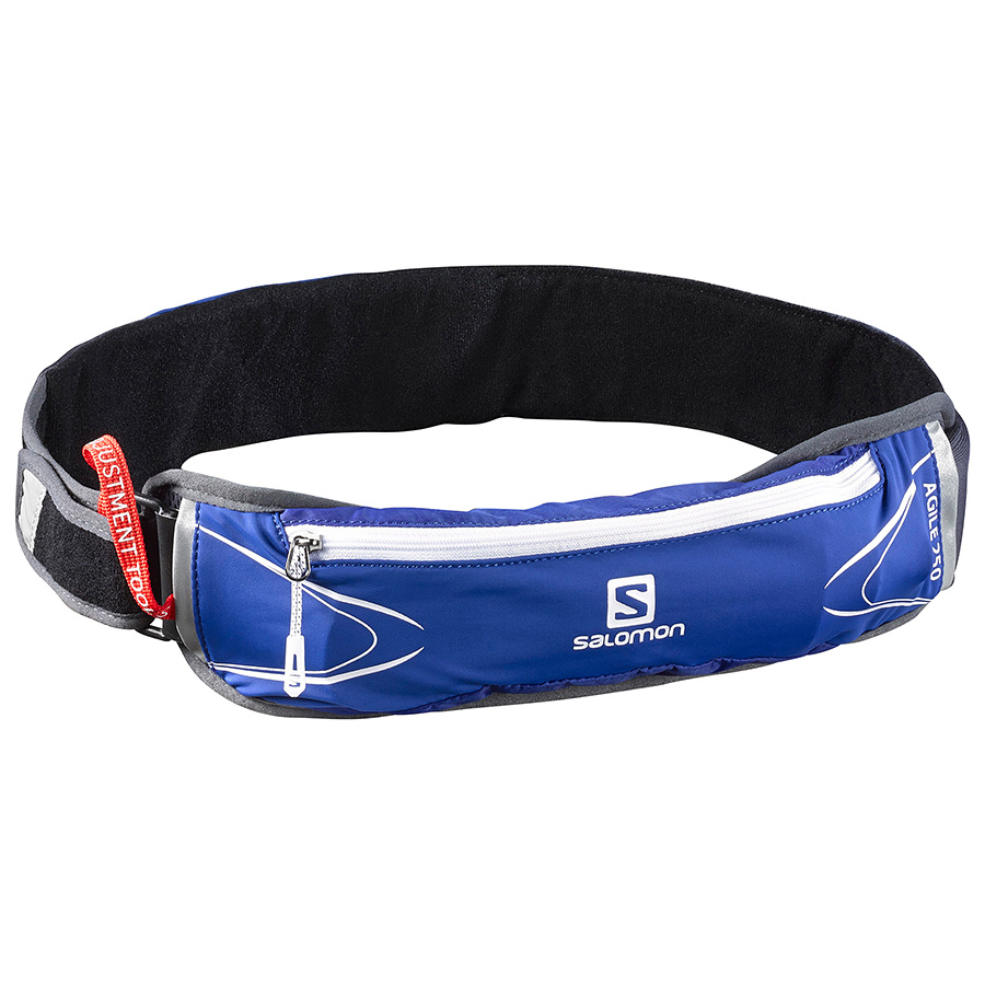 Поясная сумка Salomon Agile 250 Belt Set Surf The Web/White - Фото 1 большая