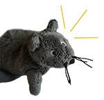 Горная мышь