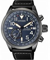 Часы Citizen CC3067-11L