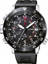 Часы Citizen BN4044-15E